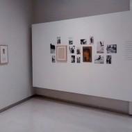 Imagen de la muestra. Archivo fotográfico MdH