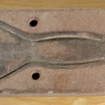 Molde de fundición. Arenisca. Bronce reciente. Yacimiento de Regal de Pidola. (Binéfar, Huesca). NIG. 07705. © Foto Fernando Alvira. Museo de Huesca.