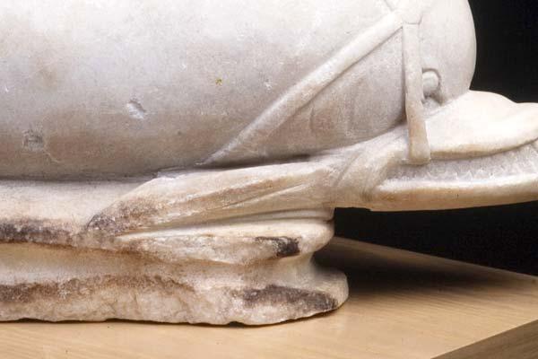 Delfín-fuente. Mármol. 300-400. Villa Fortunatus. (Fraga, Huesca) NIG. 08189. © Foto Fernando Alvira. Museo de Huesca (detalle).