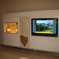 Museo de Huesca. Sala 1, audiovisual sobre arte rupestre de Huesca y vitrina con los cantos rodados de la cueva de Chaves. (Fot. MdH)